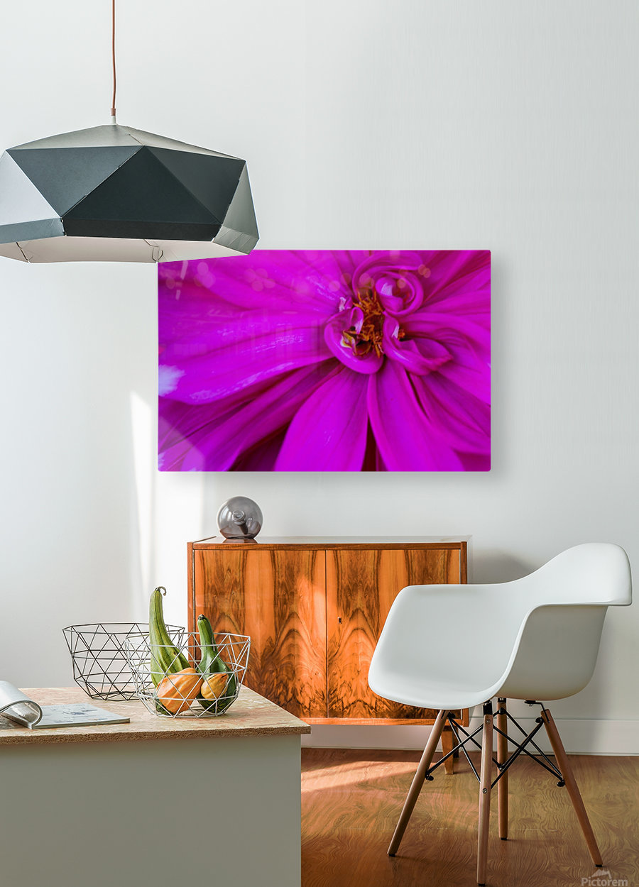 Nature and Flowers 5  HD Metal print with Floating Frame on Back