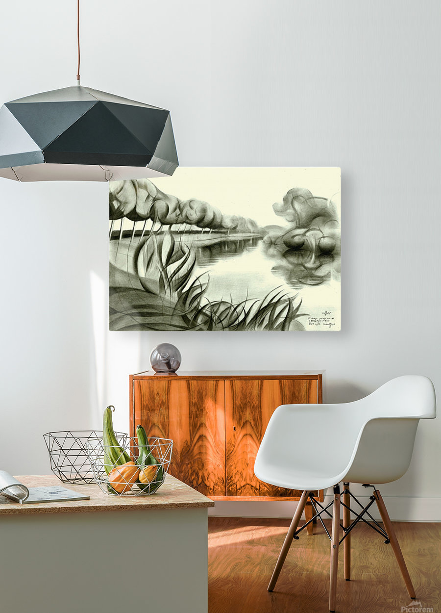 Strange goings on at 't Meertje - 10-02-16  HD Metal print with Floating Frame on Back