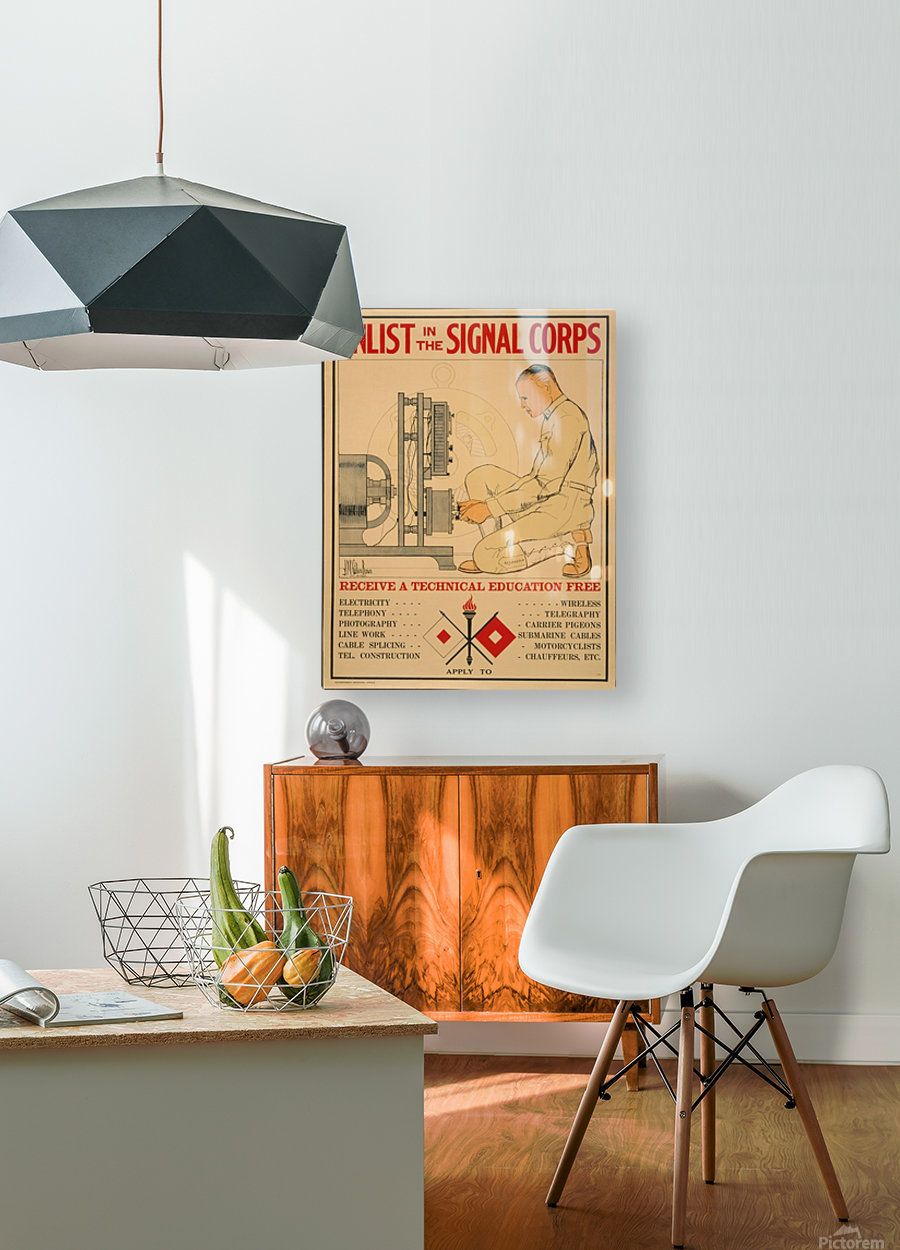 Signal Corps  HD Metal print with Floating Frame on Back