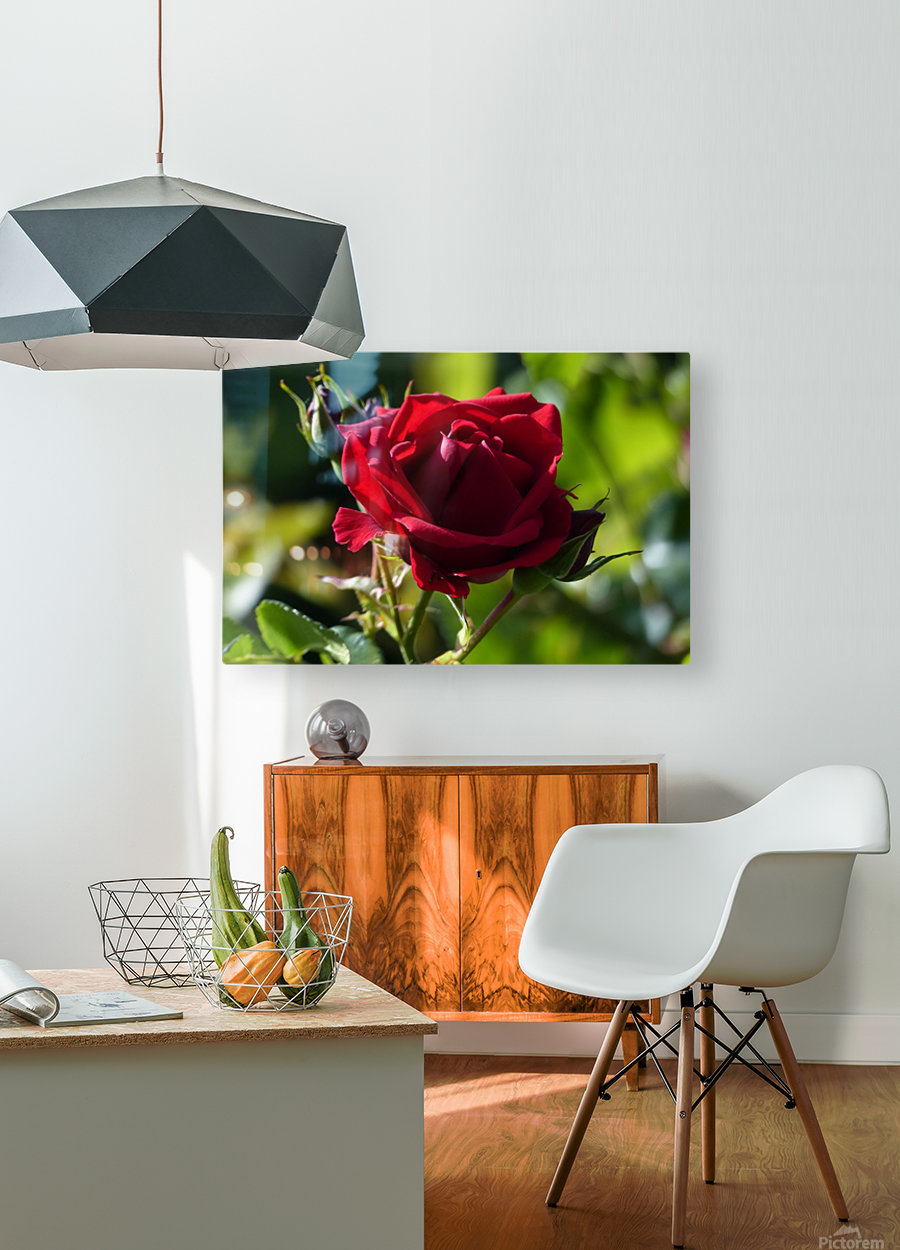 Sterling  HD Metal print with Floating Frame on Back