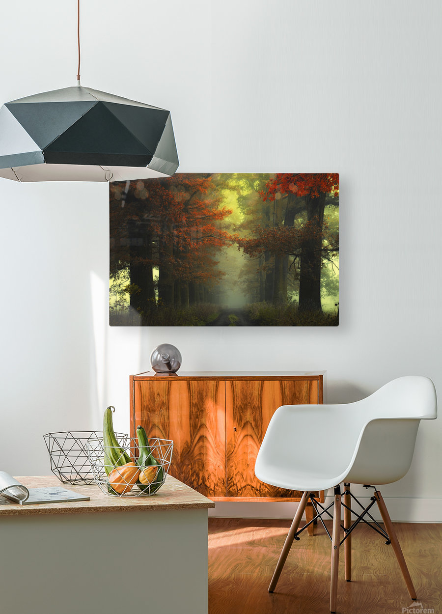 Shaman_s road on the other side  HD Metal print with Floating Frame on Back