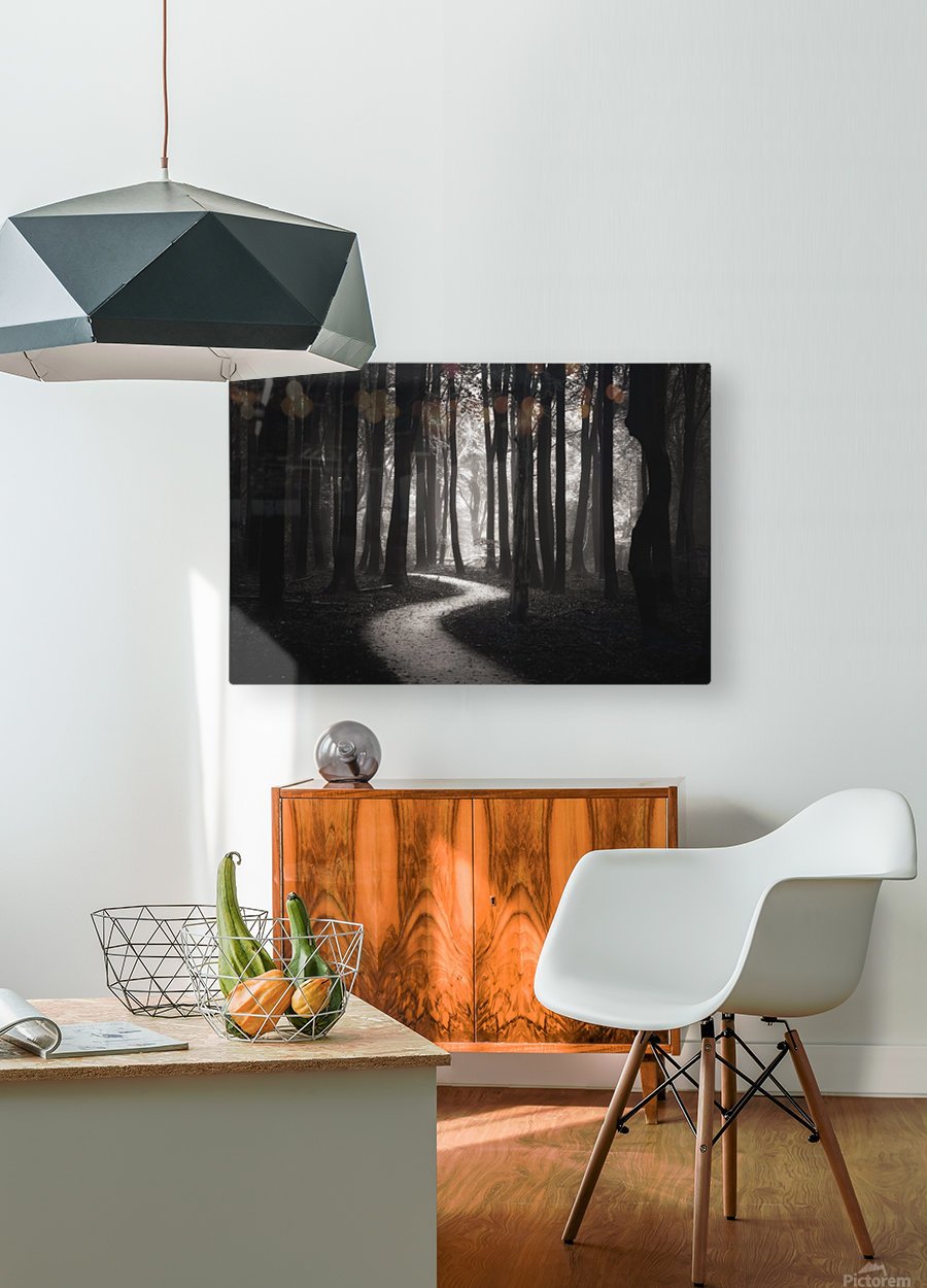 Snakes path  HD Metal print with Floating Frame on Back