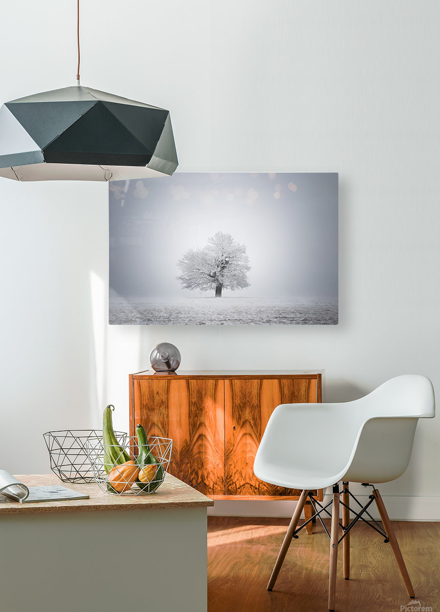 White solitude and light  HD Metal print with Floating Frame on Back