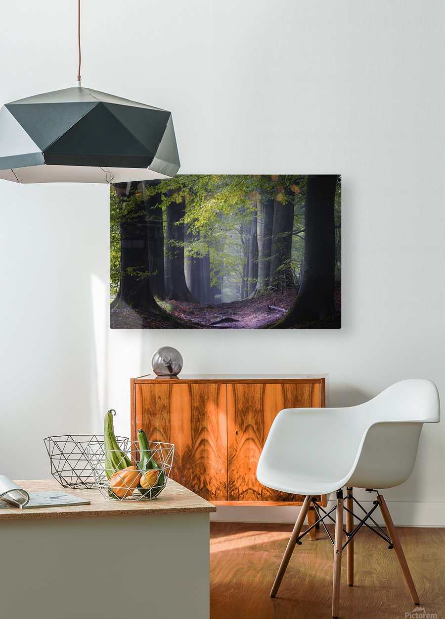 Alley of replenishing energy  HD Metal print with Floating Frame on Back