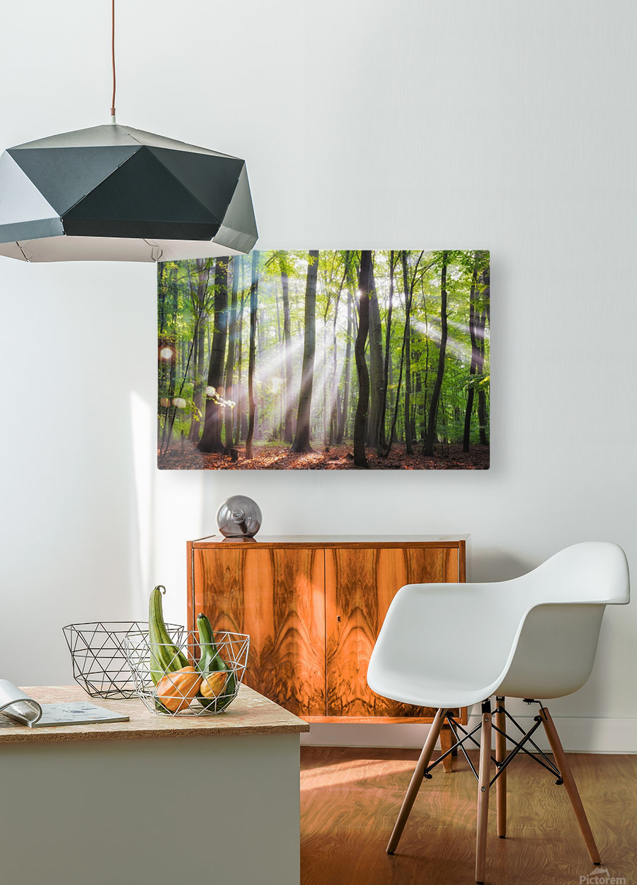 When the sun shine on your way  HD Metal print with Floating Frame on Back