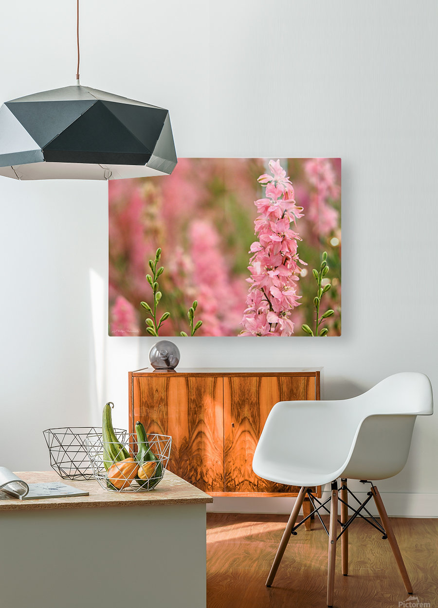 Dreamy  HD Metal print with Floating Frame on Back