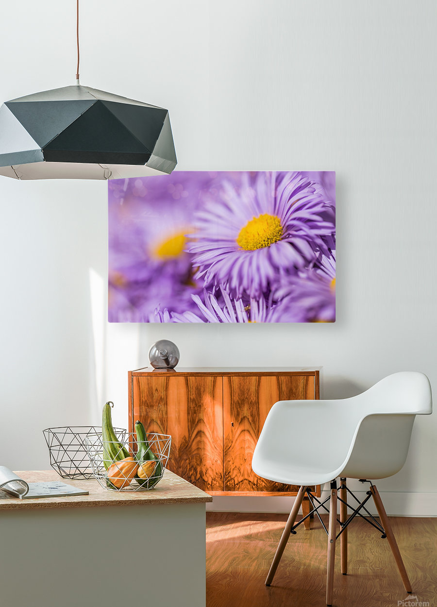 Beautiful summer background  HD Metal print with Floating Frame on Back