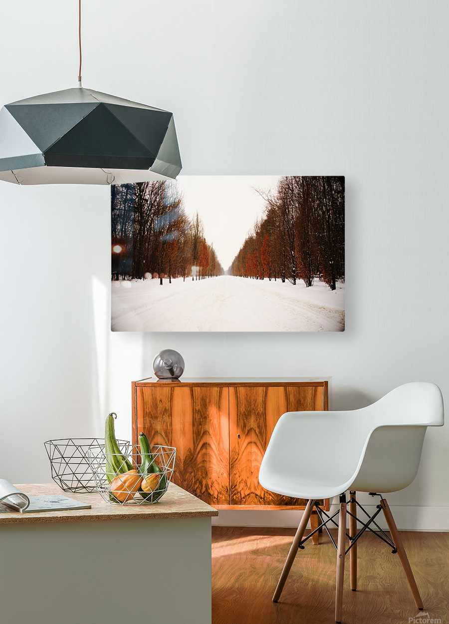 Snowy winter road  HD Metal print with Floating Frame on Back