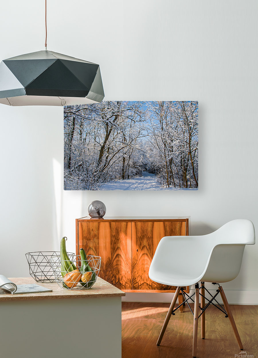 Forest covered with snow  HD Metal print with Floating Frame on Back