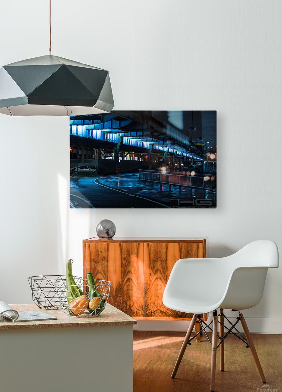 Slumber of The FDR  HD Metal print with Floating Frame on Back