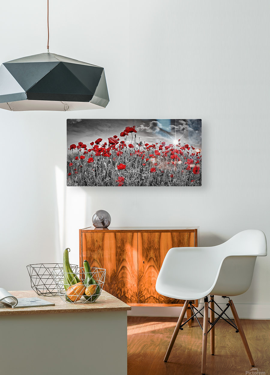 Idyllic Field of Poppies with Sun  HD Metal print with Floating Frame on Back