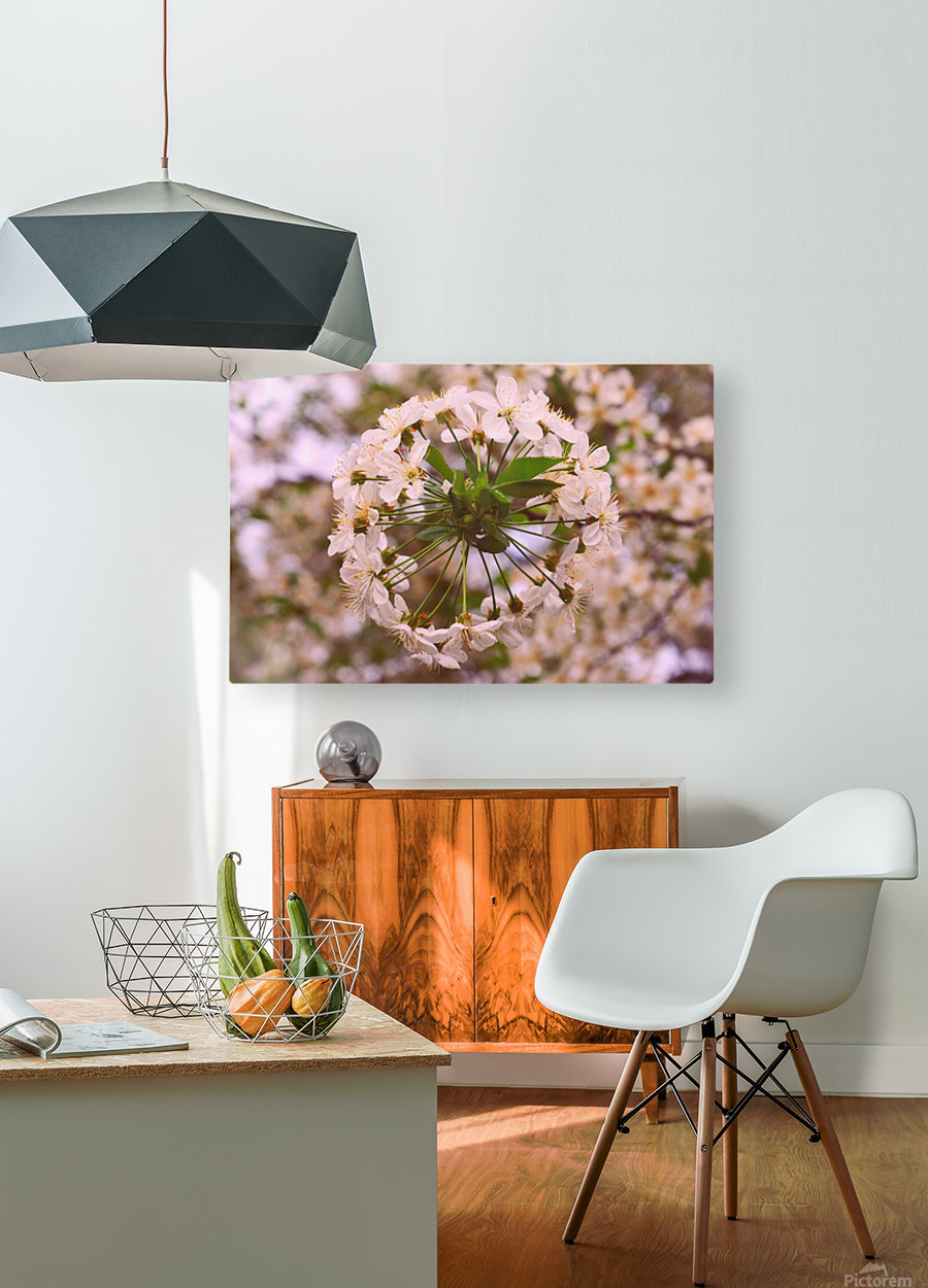 Spring clock  HD Metal print with Floating Frame on Back
