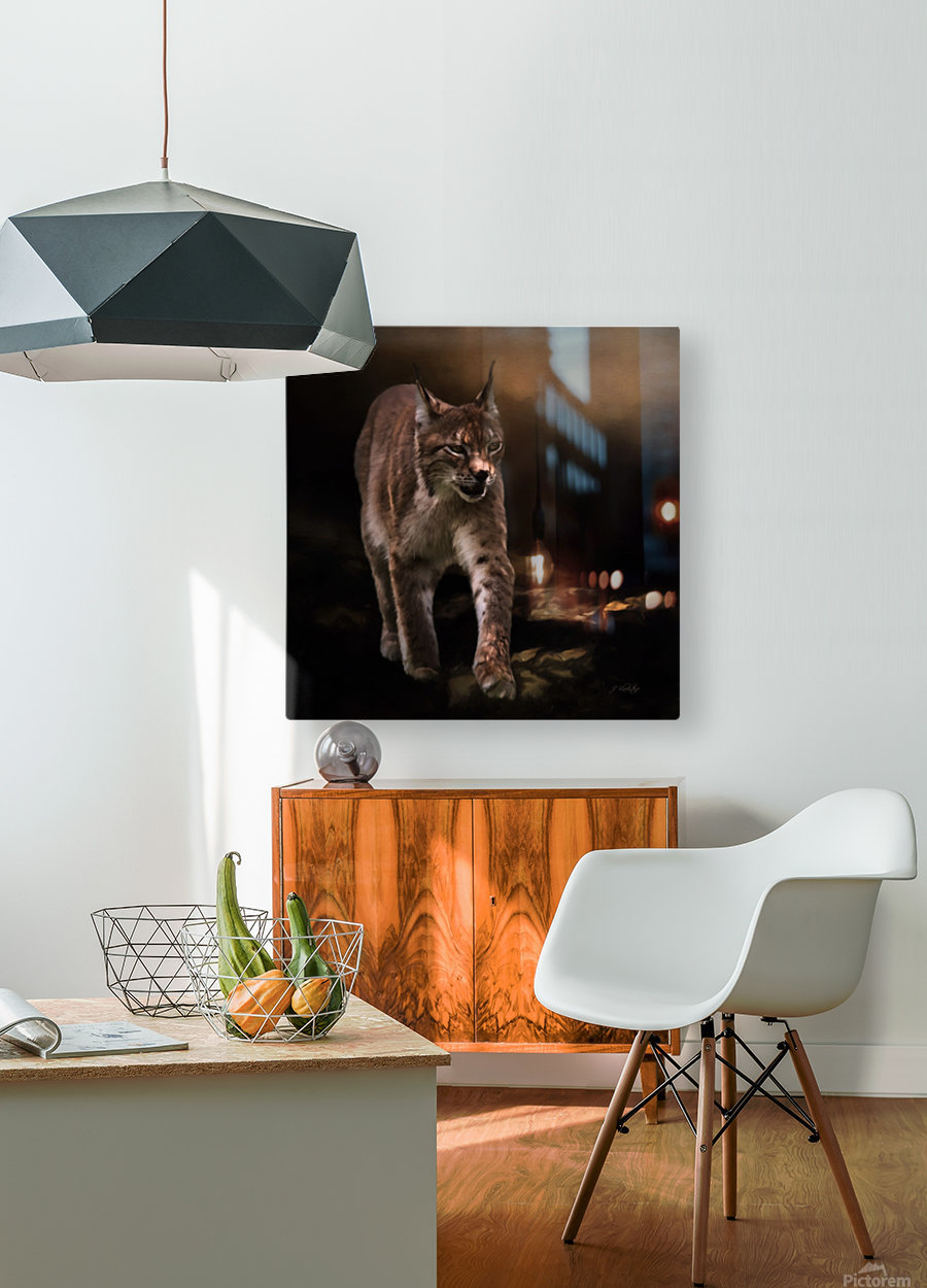 Into The Light by Jordan Blackstone  HD Metal print with Floating Frame on Back