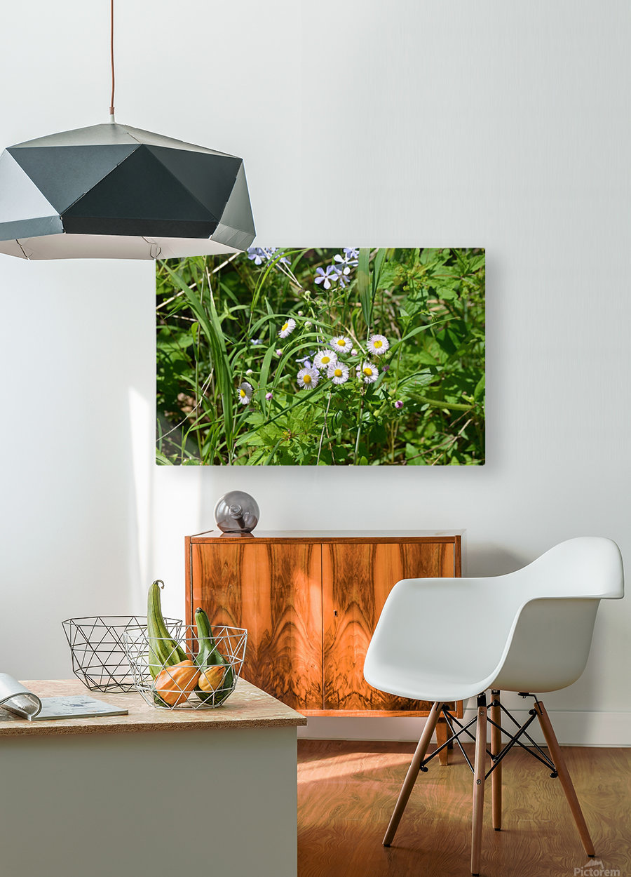 Wild flowers  HD Metal print with Floating Frame on Back