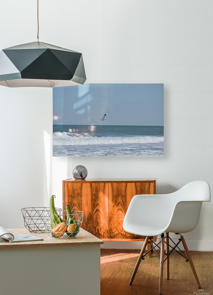 Seagull flying over waves  HD Metal print with Floating Frame on Back