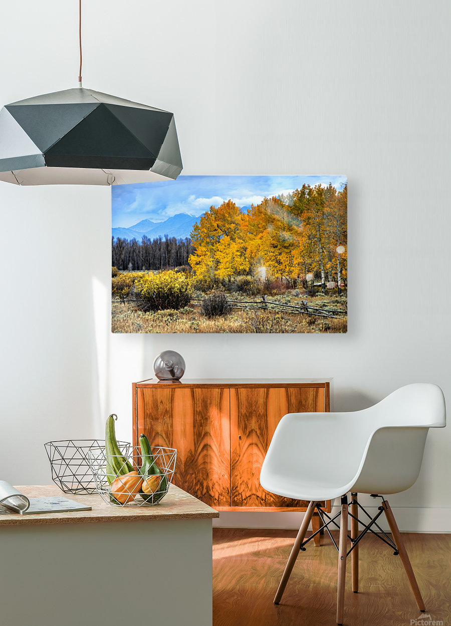 Fall Holdouts in Jackson Hole  HD Metal print with Floating Frame on Back