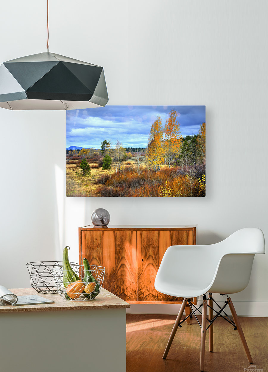 Willow Flats   Jackson Hole  HD Metal print with Floating Frame on Back