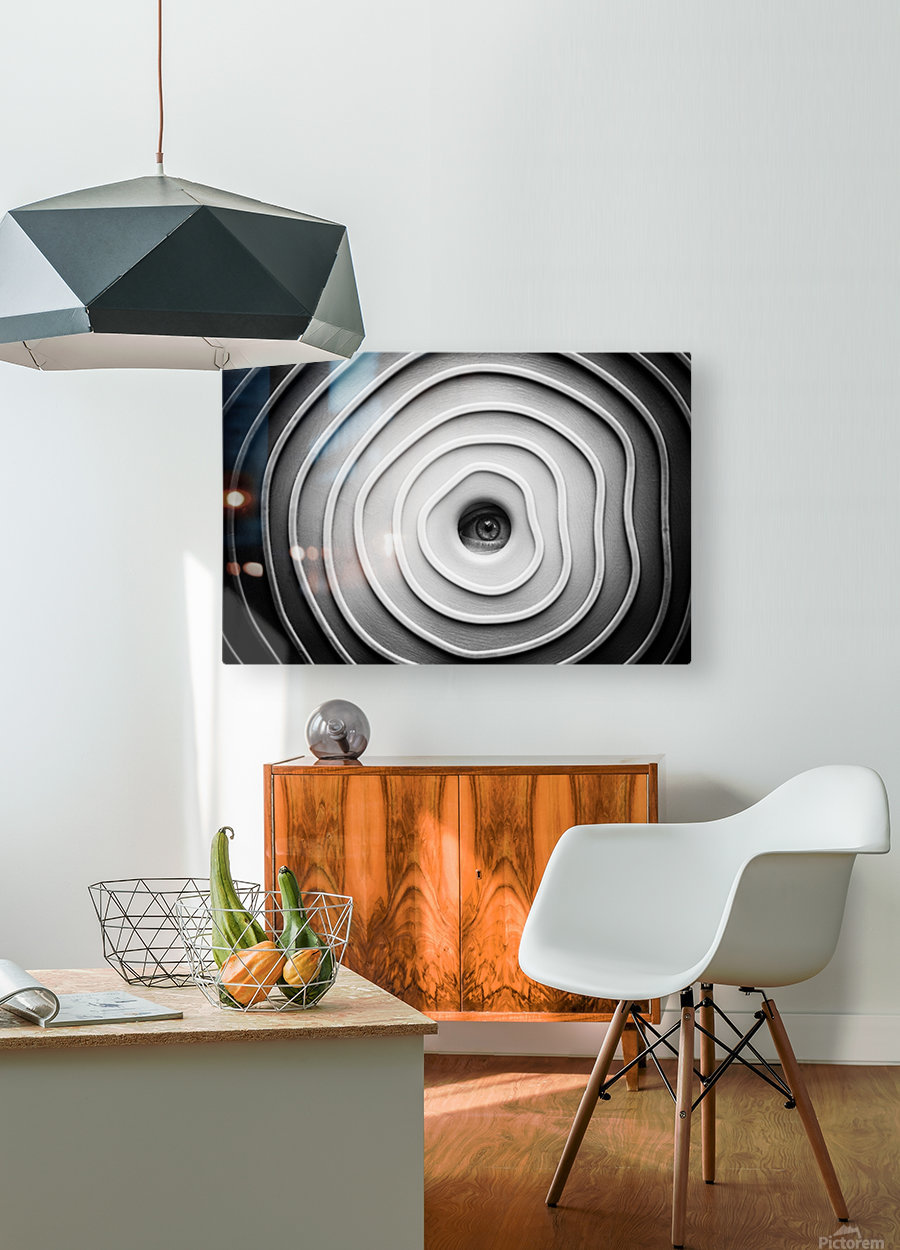 Little Spy  HD Metal print with Floating Frame on Back