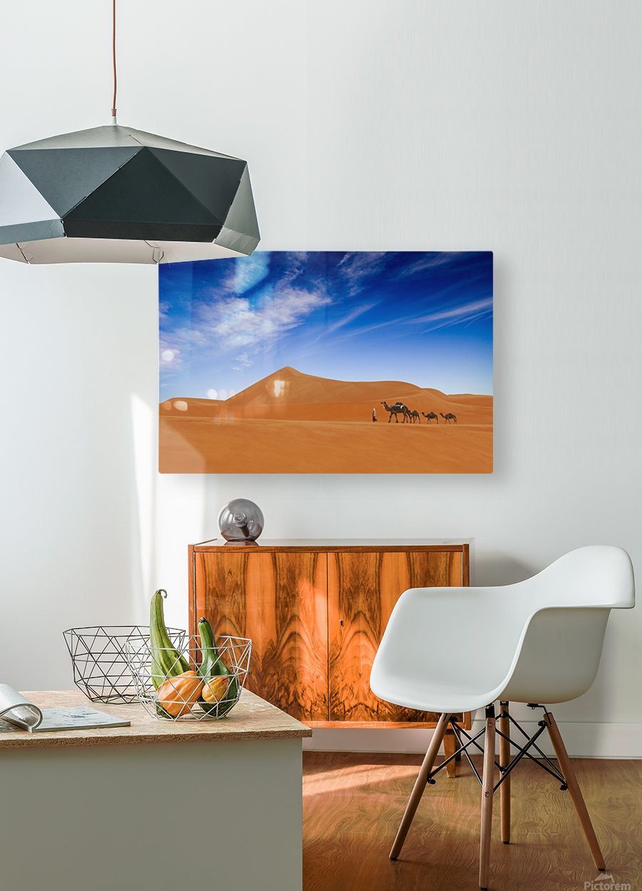 Desert Life ..  HD Metal print with Floating Frame on Back