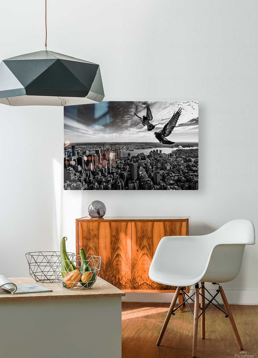 Pigeons on the Empire State Building  HD Metal print with Floating Frame on Back