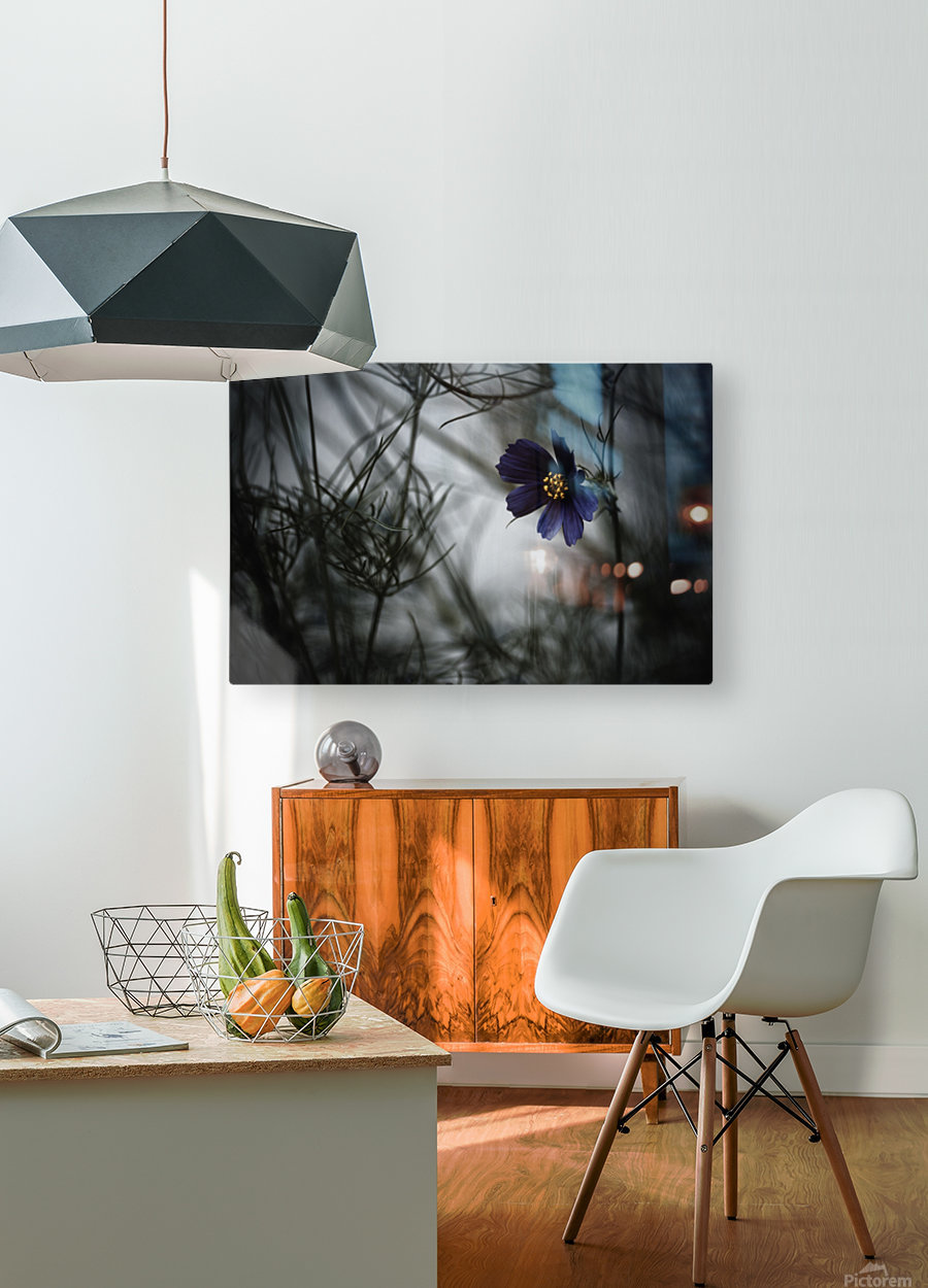 When Cosmos will be blue  HD Metal print with Floating Frame on Back