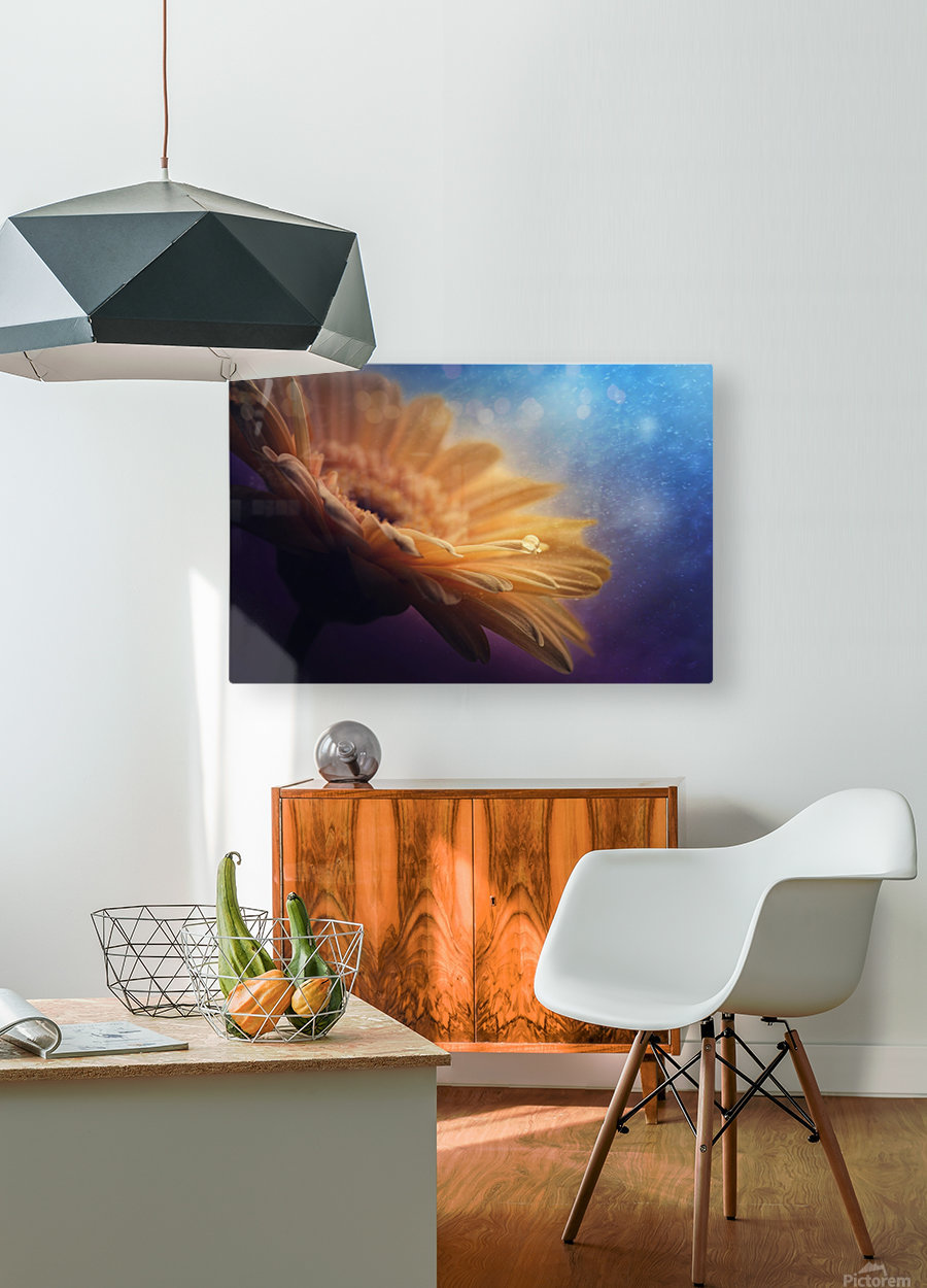 Universe  HD Metal print with Floating Frame on Back