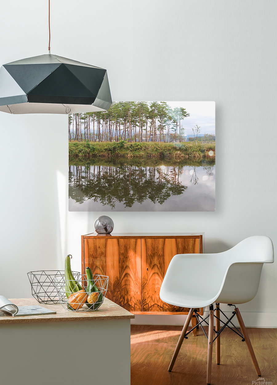 Sky, Water & Trees  HD Metal print with Floating Frame on Back