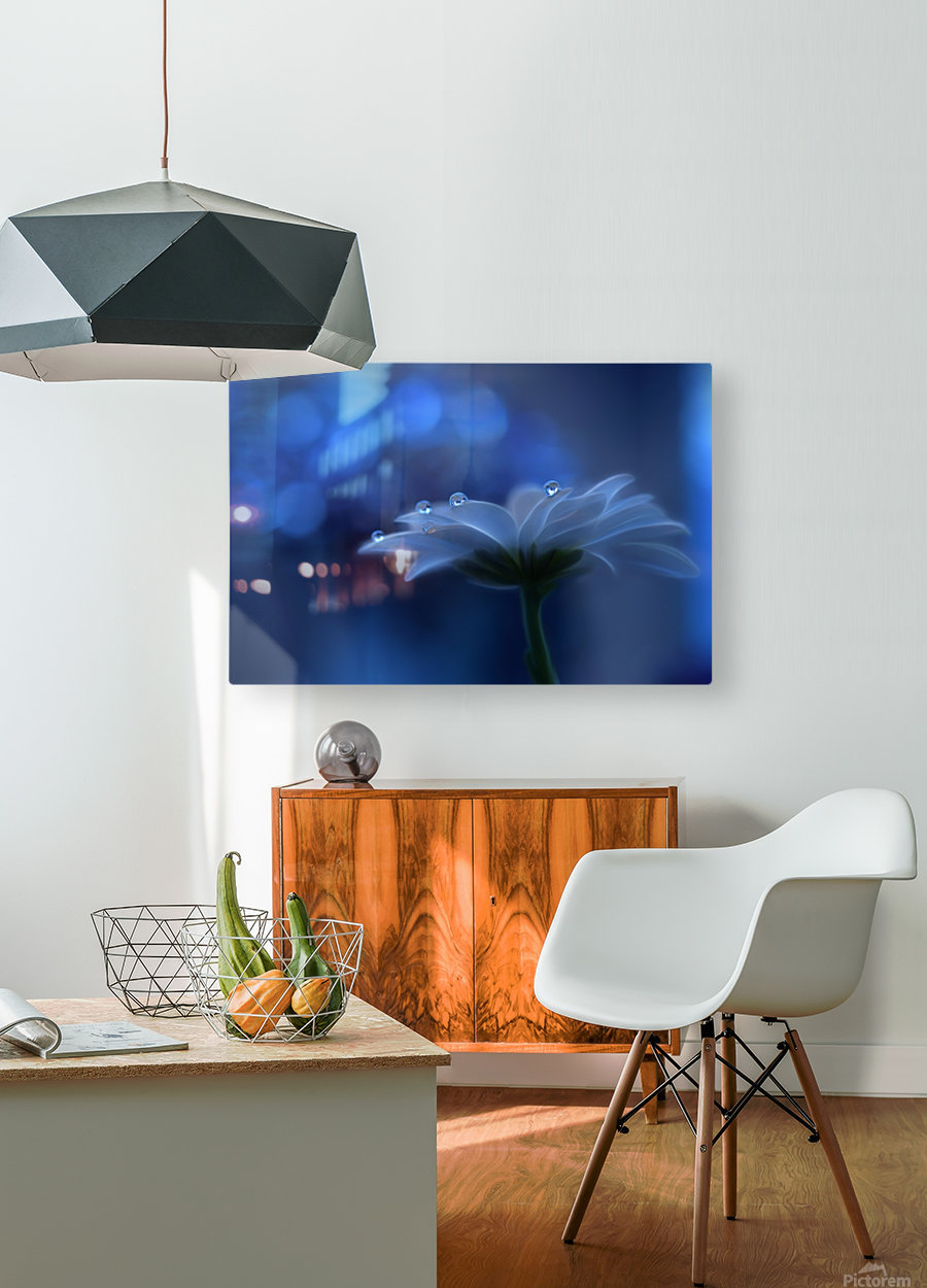 Space Dreams...  HD Metal print with Floating Frame on Back
