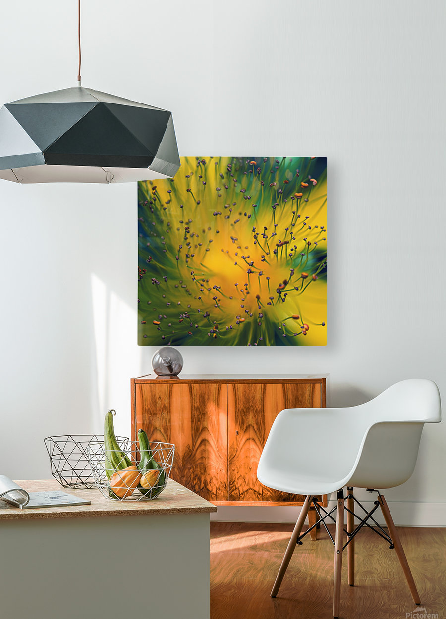 Creation  HD Metal print with Floating Frame on Back