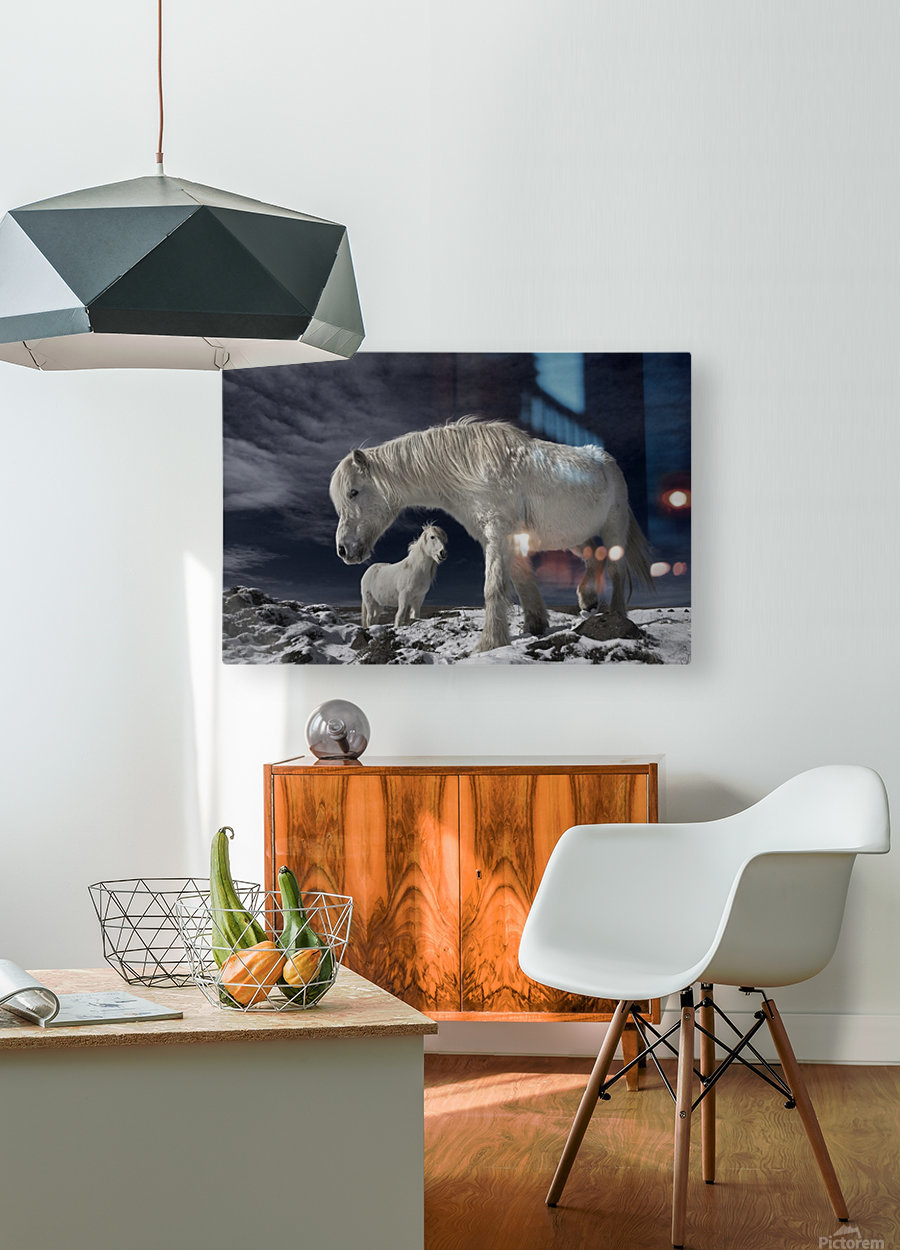 Partners  HD Metal print with Floating Frame on Back