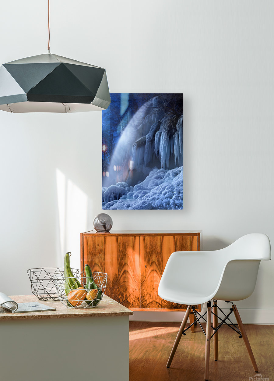 Frozen in the moonlight  HD Metal print with Floating Frame on Back