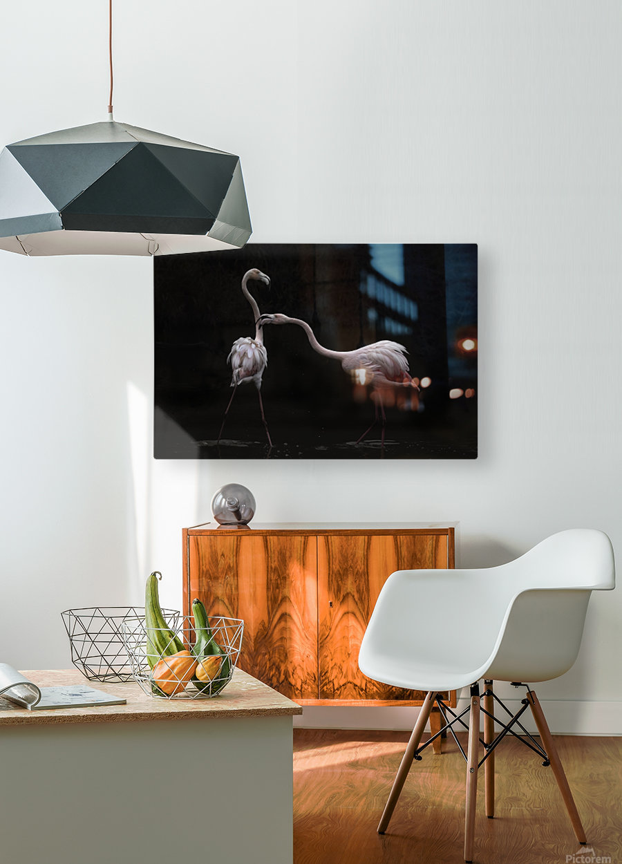Not all is rosy  HD Metal print with Floating Frame on Back