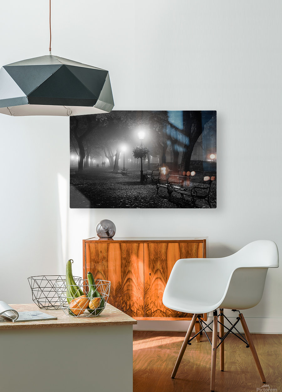 Foggy Day  HD Metal print with Floating Frame on Back