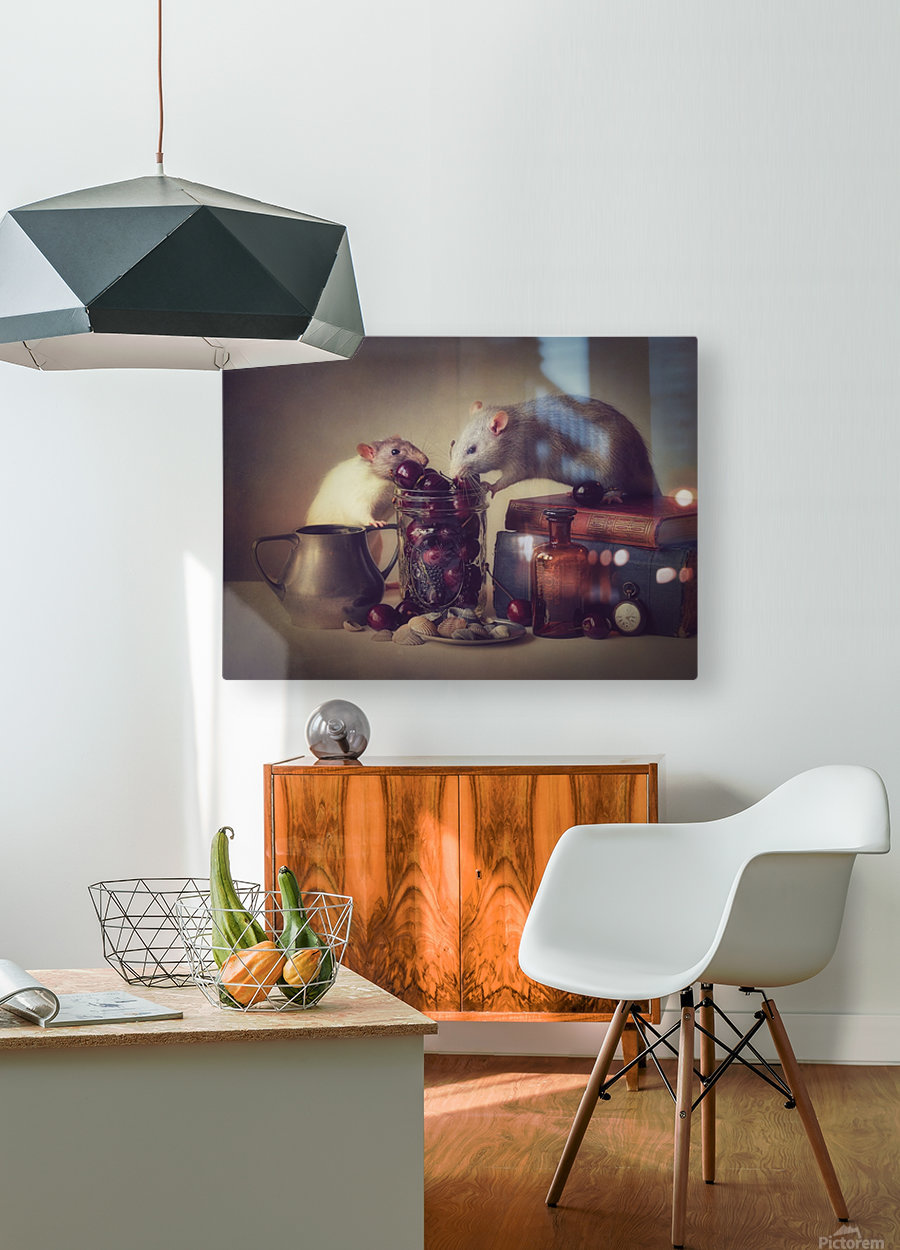 Snoozy and Jimmy  HD Metal print with Floating Frame on Back