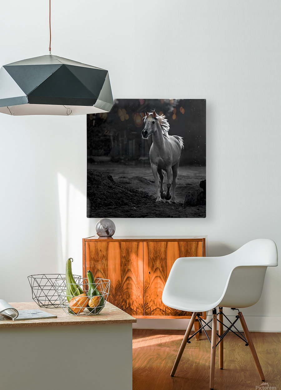 Coquetry  HD Metal print with Floating Frame on Back