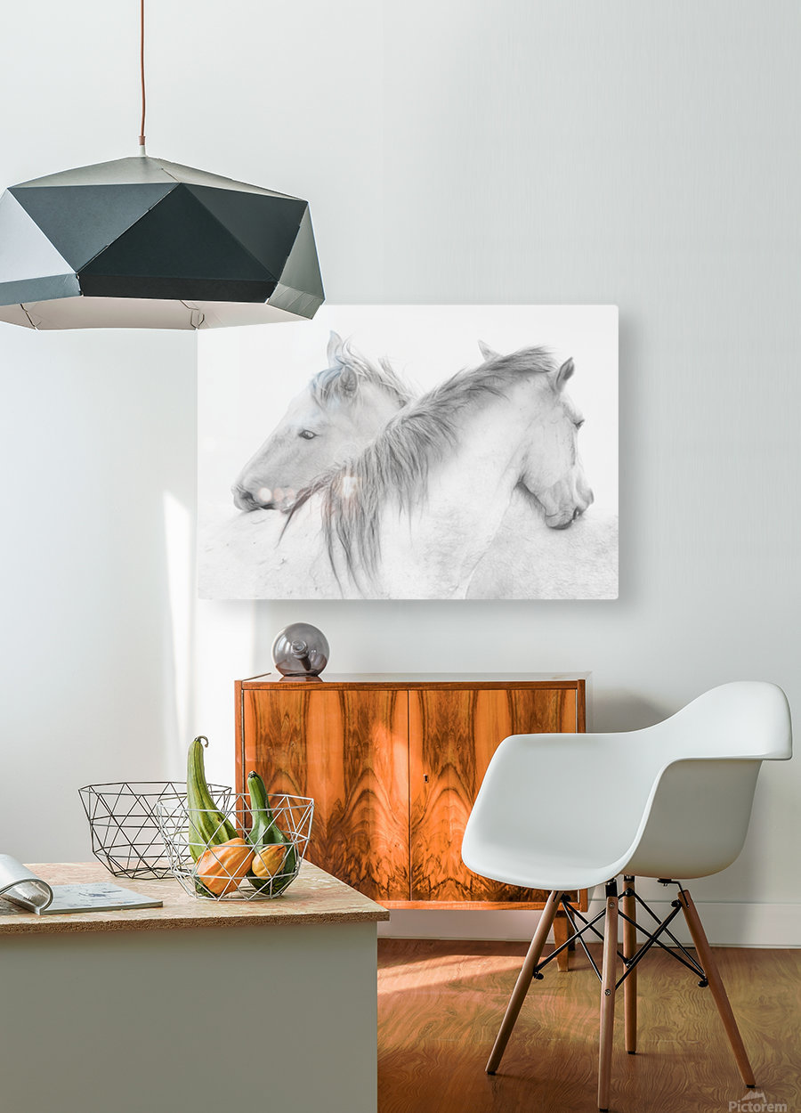 Horses  HD Metal print with Floating Frame on Back