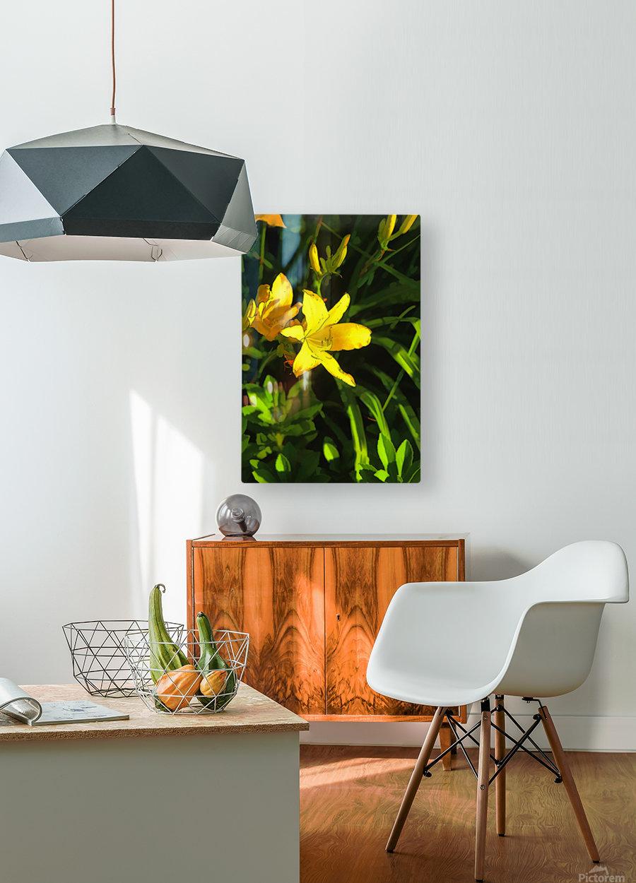 pot luck tom prendergast  HD Metal print with Floating Frame on Back