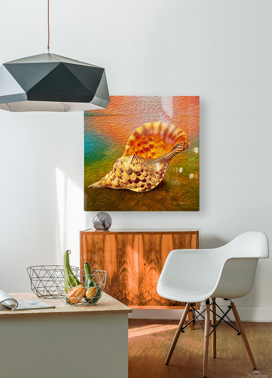 Art213  HD Metal print with Floating Frame on Back