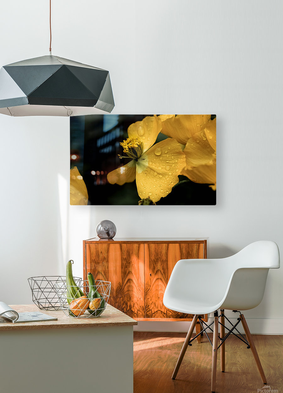 Butterfly Flower  HD Metal print with Floating Frame on Back