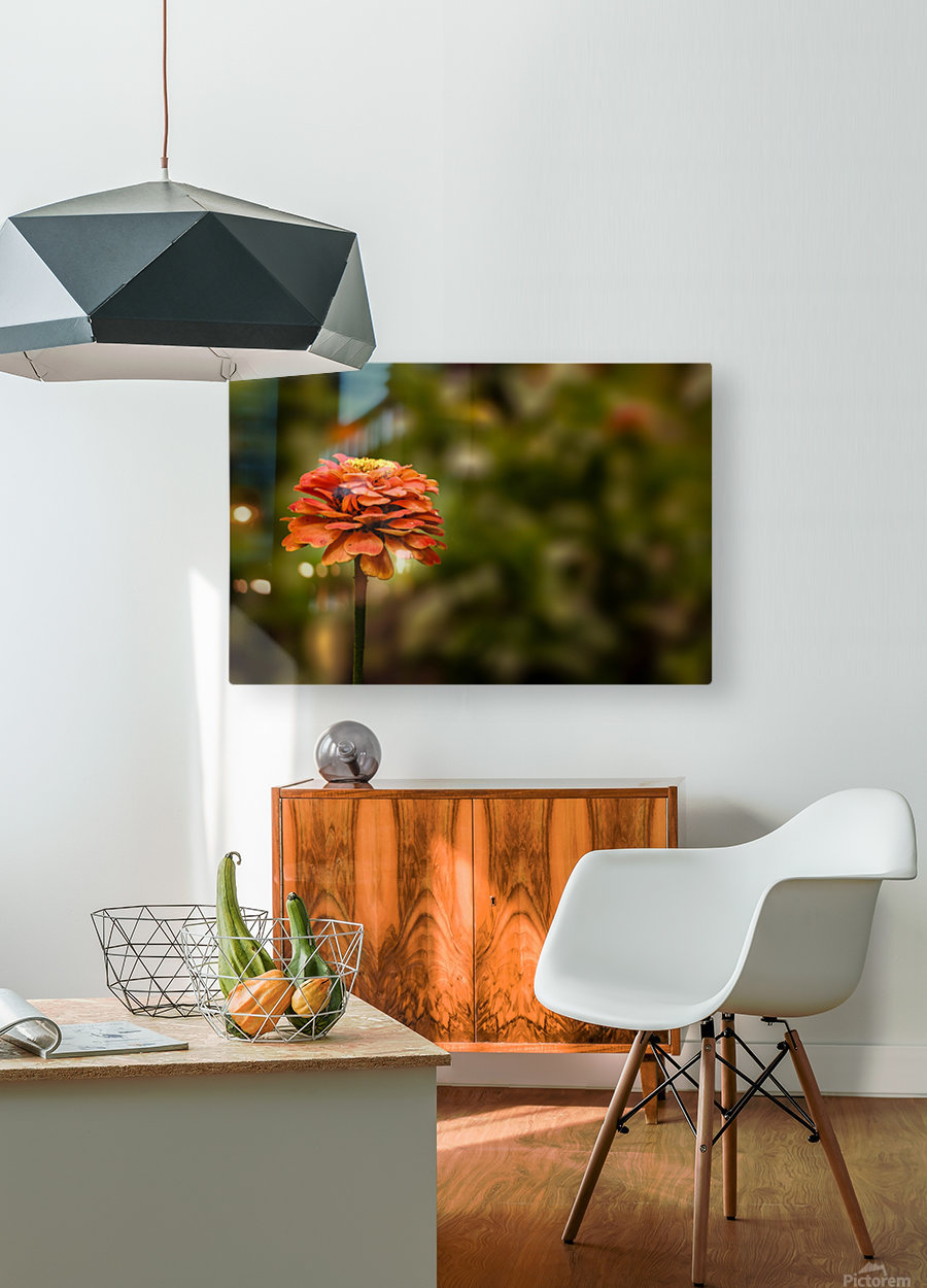 The Dreamer  HD Metal print with Floating Frame on Back