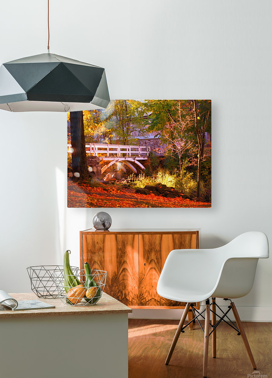 Autumn Colors II  HD Metal print with Floating Frame on Back