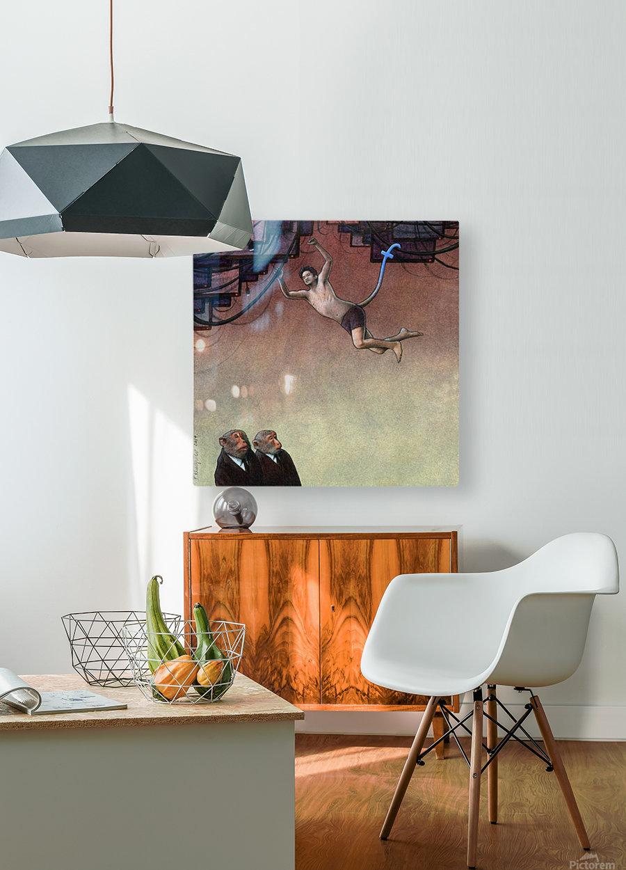 Evolution Facebook  HD Metal print with Floating Frame on Back