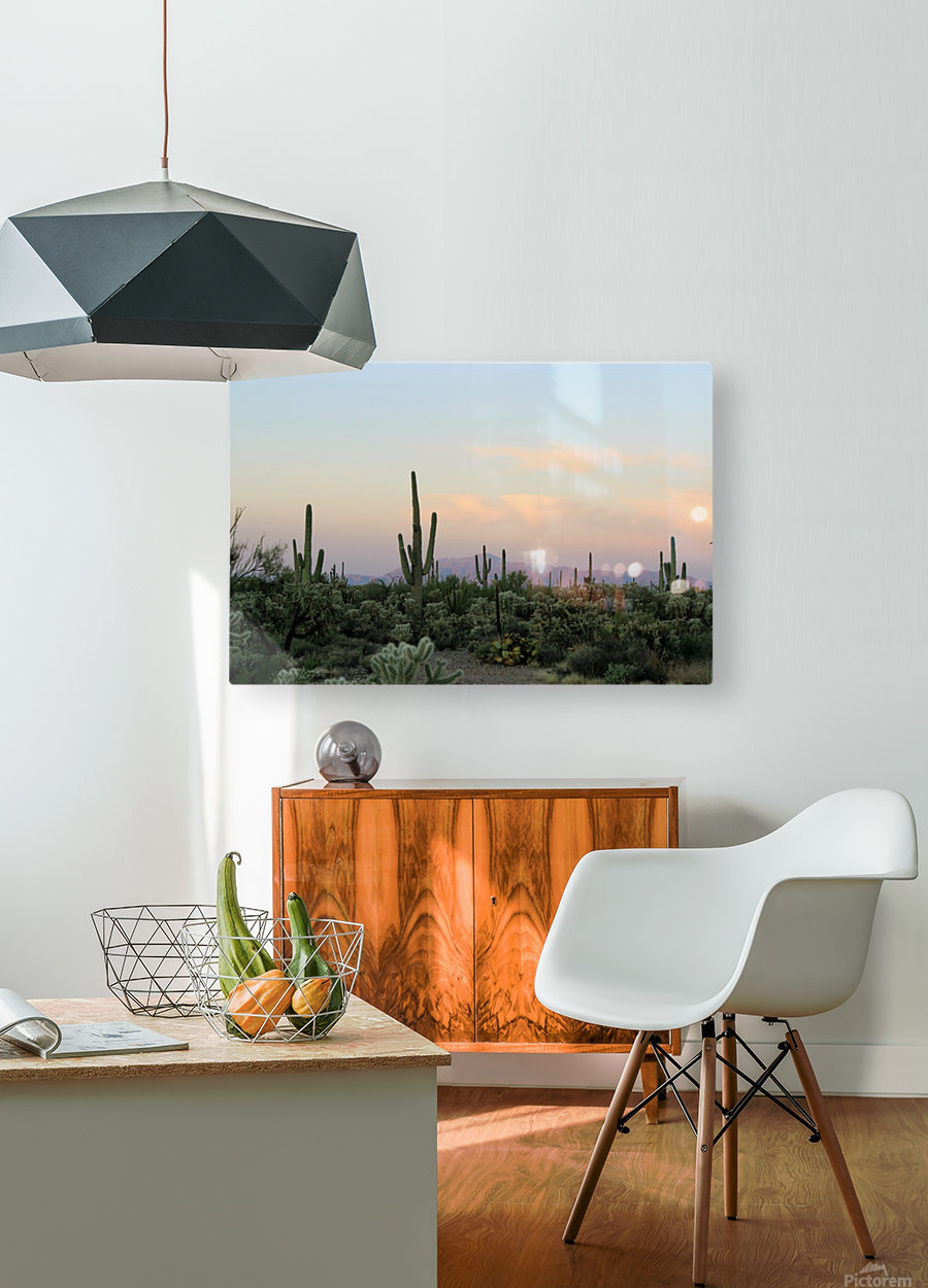 Arizona Desert  HD Metal print with Floating Frame on Back