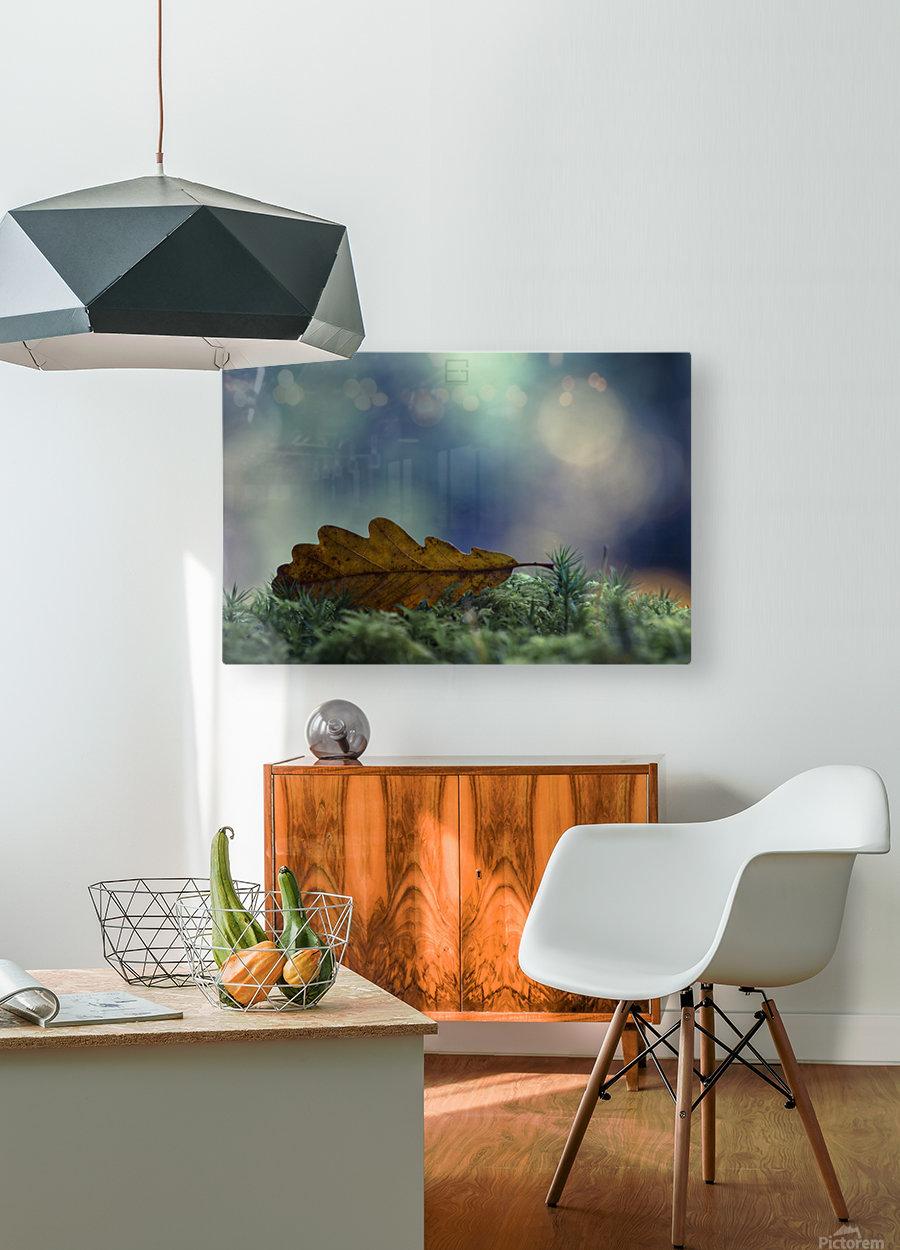 leaf  HD Metal print with Floating Frame on Back