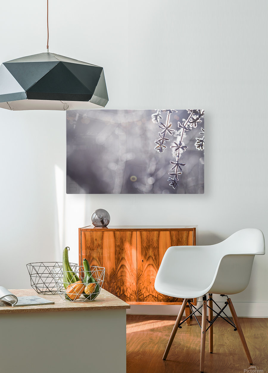 --  HD Metal print with Floating Frame on Back