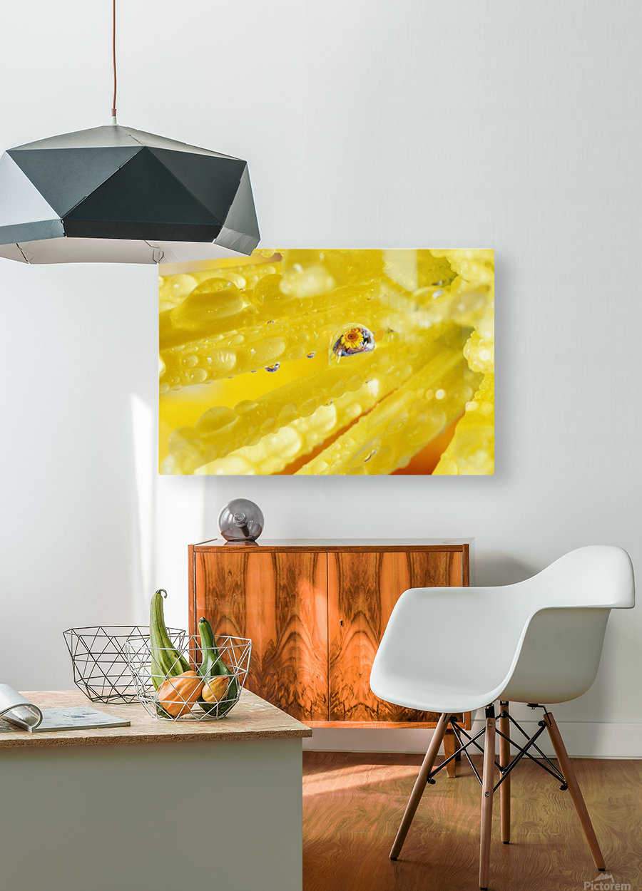 Yellow Flowers Reflected In Dew Drop  HD Metal print with Floating Frame on Back