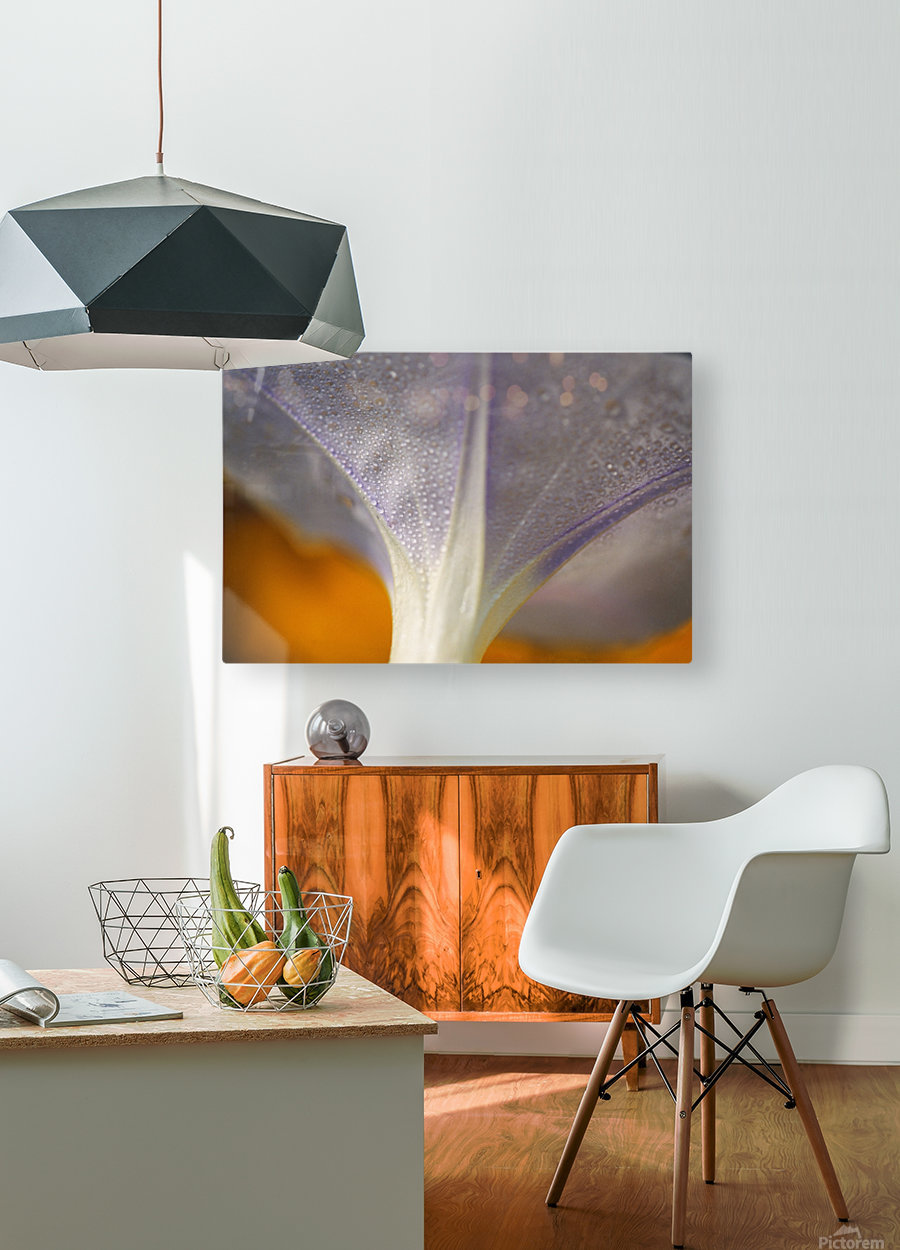 Underside Of A Flower Blossom With Dew  HD Metal print with Floating Frame on Back