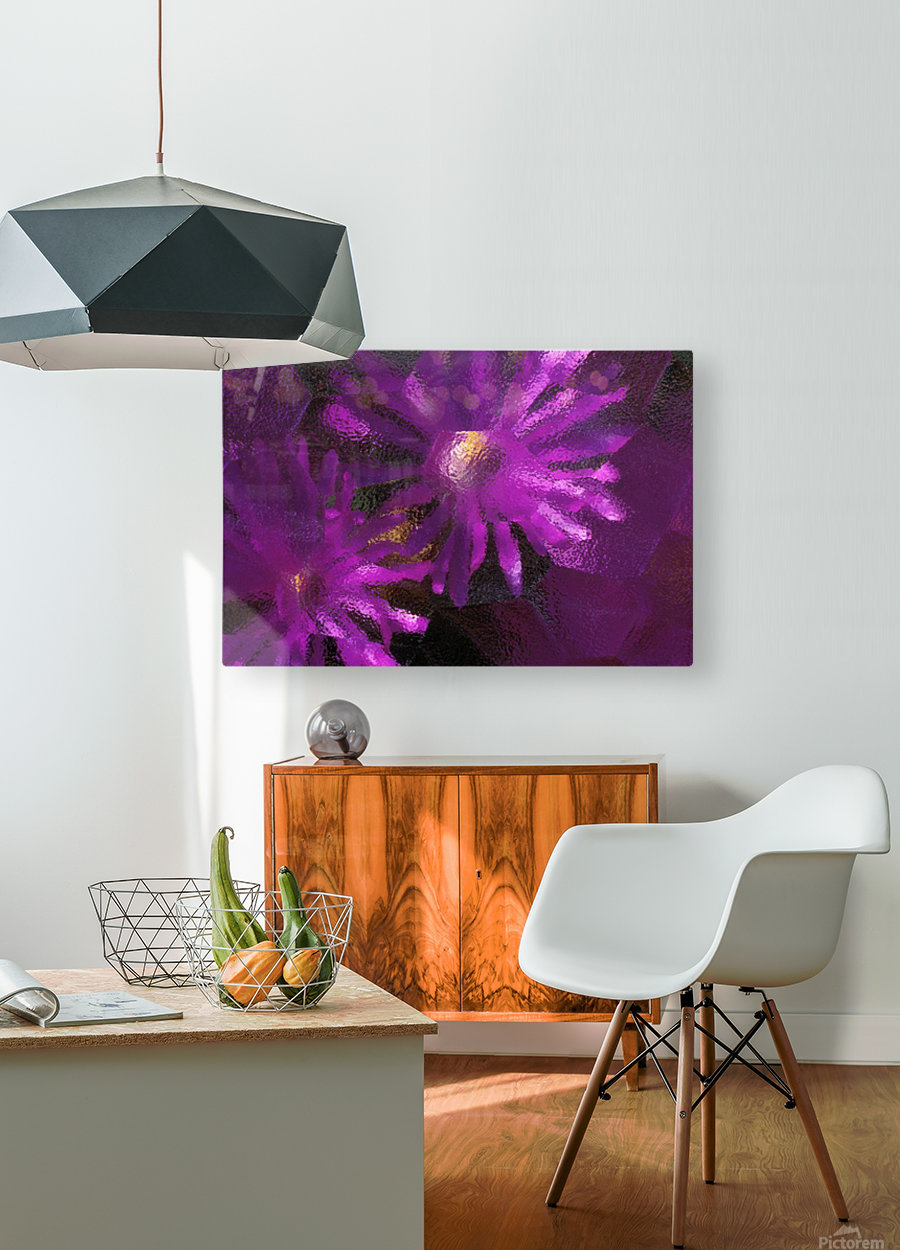 Ice Plant Blossoms Under Ice  HD Metal print with Floating Frame on Back
