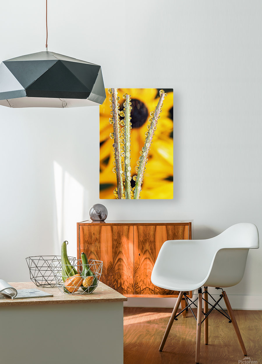 Reflection In Dew Drops  HD Metal print with Floating Frame on Back