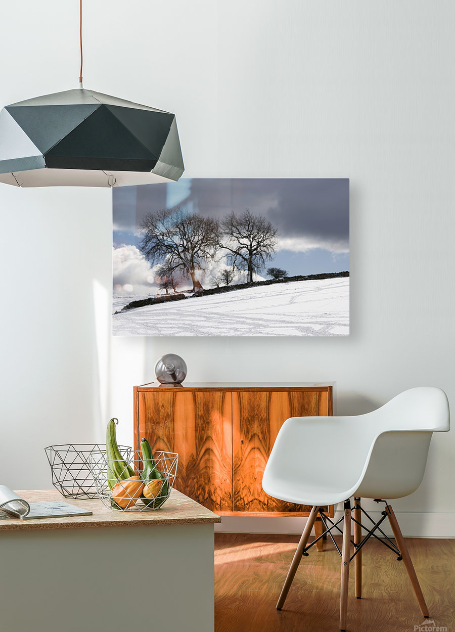 Snowy Field, Weardale, County Durham, England  HD Metal print with Floating Frame on Back